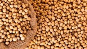 Agricultor foi reconhecido pelo CESB, ao atingir o excepcional resultado de 96,81 sacas de 5.808 kg de soja por hectare