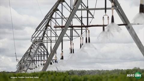 Para enfrentar crise hídrica, produtor rural deve optar por sistemas de irrigação