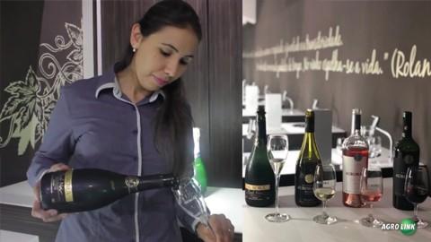 Vinícola Aurora possui portfólio de 13 marcas próprias e mais de 200 itens