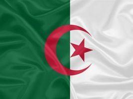 Argélia compra 580 mil t de trigo em leilão, dizem operadores