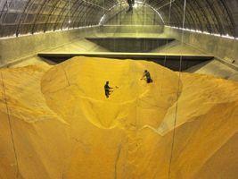 Show Rural - Armazenamento inadequado de grãos provoca perdas de até 40%
