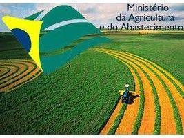Auditores agropecuários cobram do governo ocupação de cargos por meritocracia