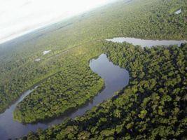 Siageo Amazônia: conhecimento para o desenvolvimento sustentável