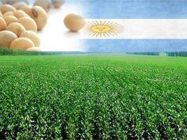 Argentina vai endurecer fiscalização e punição por uso de sementes ilegais