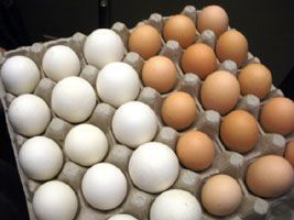 Influência do frango e do ovo na inflação de 2016