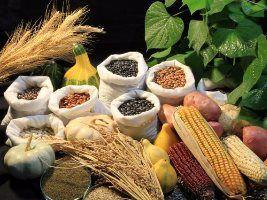 Produtos do agronegócio representaram 39% das exportações brasileiras até outubro de 2016