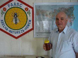 Pesquisa altera números de apicultores e confirma produtividade e qualidade de mel catarinense