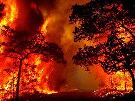 Incêndio devasta 1,376 milhão de hectares de pecuária na Argentina