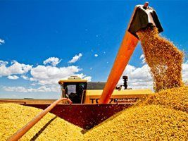 Metodologia evita desperdício na colheita de soja