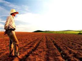 Impactos mundiais das mudanças do uso da terra serão estudados