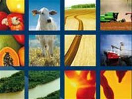 Exportações do agronegócio brasileiro já somam US$ 88,65 bi