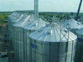 Uso de estufas de ar forçado na precisão da determinação do grau de umidade de sementes