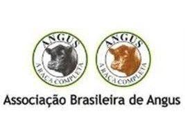 Carne Angus catarinense será comercializada sob marca própria dentro de SC