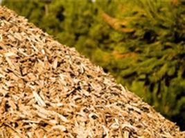 Curso ensina agricultores a produzir adubo orgânico 100% vegetal