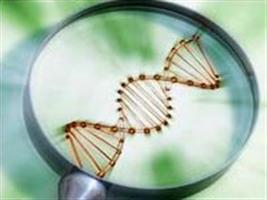 Biotecnologia e agricultura: da ciência e tecnologia aos impactos da inovação