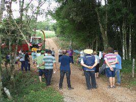 Bovinocultores de Leite de Cotiporã e São Valentim do Sul participam de Dia de Campo