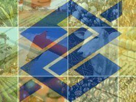 Banco do Brasil: recursos de pré-custeio já estãodisponíveis em fevereiro