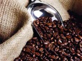 Cotações do café voltaram a subir na bolsa de Nova York