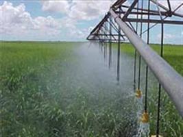 Senar-RS promove oficinas de irrigação na Expodireto 2013