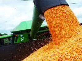 Avaliação do relacionamento entre danos mecânicos e vigor de sementes de milho, por meio de imagens