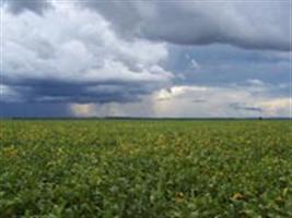 Inverno começa com previsão de pouca chuva no RS
