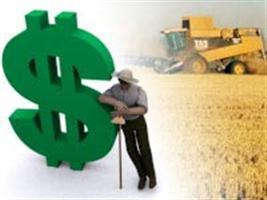Mais Alimentos amplia linha de veículos financiados
