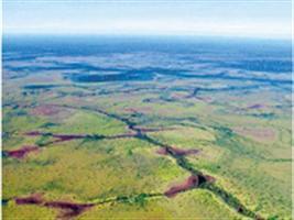 Uso de fotografias aéreas coloridas 35 mm na avaliação de produtividade de grãos