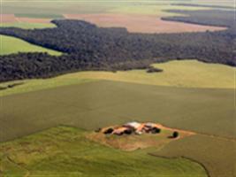 Imagens de satélite vão denunciar erros em demarcações indígenas