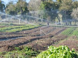 Programa Irrigando a Agricultura Familiar leva água à região de Arroio do Meio