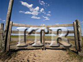Prazo de entrega do ITR 2013 começa em 19 de agosto