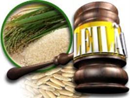 Leilão vende 87,9 mil toneladas de arroz