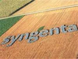 Syngenta é um dos grandes destaques do Show Rural Coopavel