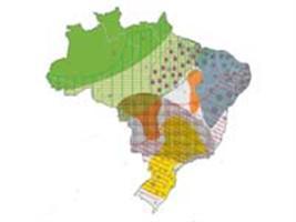 Novos mapas do IBGE auxiliam pesquisadores e gestores na área agrícola