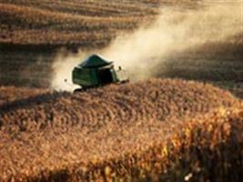 Em julho, IBGE prevê safra de grãos 2,0% maior que a safra recorde de 2011