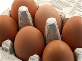 Granja Shintaku é referência na produção de ovos com Ômega 3