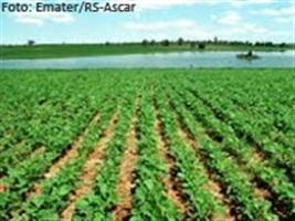 Correção do solo: Apuração com eficácia, tratamento preciso