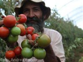 Show Rural - Plano Safra 2014/2015 alcança R$ 13 bilhões em cinco meses