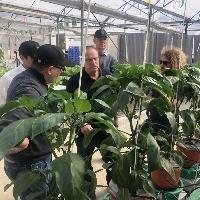 Agro brasileiro vai a Israel por novas tecnologias