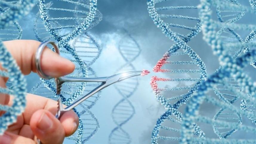 Resultado de imagem para Culturas OGM serão desenvolvidas no Reino Unido